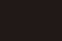 Логотип веб студии SPIDERNET